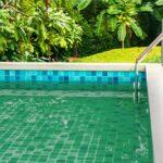 Como acabar com as algas da sua piscina